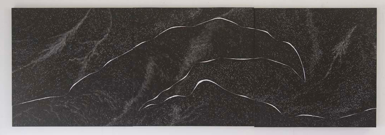 Chemins, 2009, encre de chine sur bois , 80x240