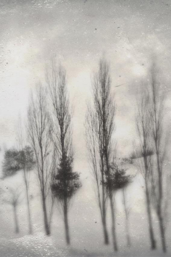 Delphine Coolen, Photographie-1