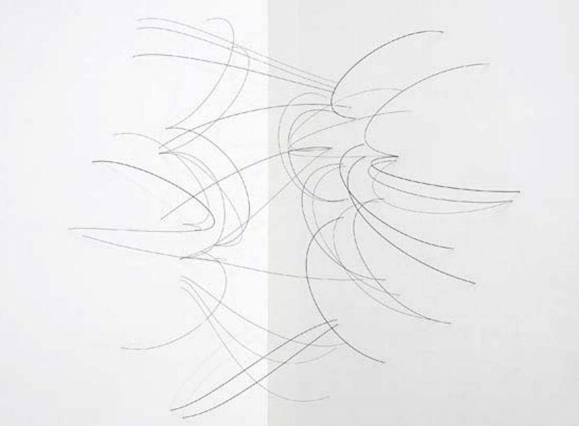 Ronde-bosse, 2008 Installation Cordes à piano 180 x 240 x 40 cm