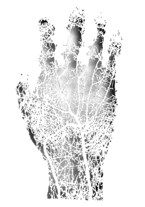 Tendre est la main, 2006 120 x 80 cm, Papier découpé, inséré entre deux plaques de verre et posé sur une petite étagère